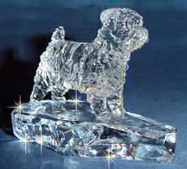 Hand-Sculpted Crystal Statue of Norfolk Terrier 3/4 View
